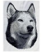 Sibiřský husky 3